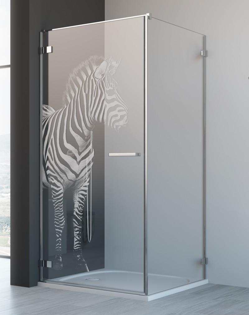 grawer-main-zebra.jpg